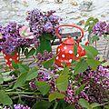 Le temps du lilas et des premiers bouquets
