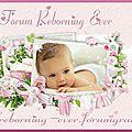 La nurserie des P'tits Choux Roses