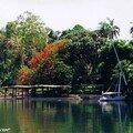 Jardin botanique de L'Île Kitchener