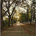 Quartier <b>Drouot</b>-Barbanègre - L'automne en fête...