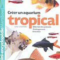 créer un aquarium tropical