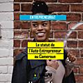 Comment devenir un auto-entrepreneur au cameroun ?