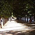 paris. jardin du <b>palais</b> <b>royal</b>.