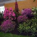 Floralies 085