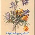Fighting spirit en flacon / mes livres