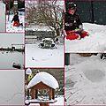 La neige toujours et encore.....