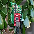 Vos plantes assoiffées twittent sur votre smartphone !