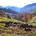 Un jour en forêts d'Aspe Barétous, le 11 novembre 2011...