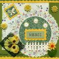 Carte de Nicoue