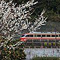 Odakyû LSE 7000系, Hakone-Yumoto