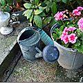 Windows-Live-Writer/jardin-charme_12604/DSCN0617_thumb