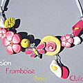 Eclosion-framboise-anis