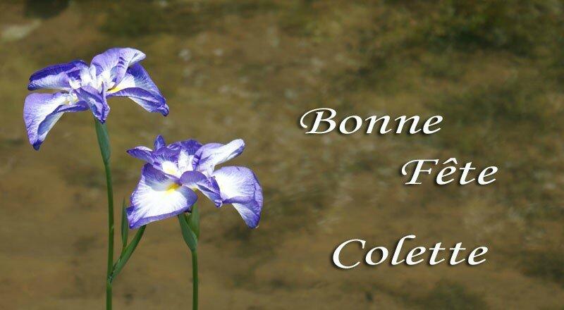 BONNE FETE COLETTE