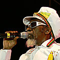 The Wailers - Is This Love at Glastonbury 2014.