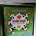 Test de thé(s) #54 : box de mai 2015 de Envouthé : <b>Terrible</b> <b>Jungle</b>
