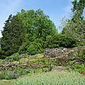 jardin botanique (295).JPG