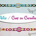Bracelets brésiliens : alice et le chat du cheshire