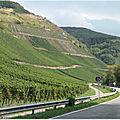 De Trèves à Bernkastel au fil de la Moselle