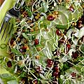 Deuxième d'une série ? salade composée légère et équilibrée. encore et encore, c'est bon pour la santé !