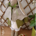 Mon lapin elfe