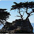Road Trip to California : from Santa Barbara to Monterey...