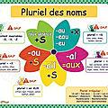 Grammaire : Le <b>pluriel</b> des noms