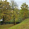 Le cottage de Gwladys