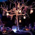 diner_chandelles_arbre