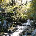 Ruisseau morvandiau (58)