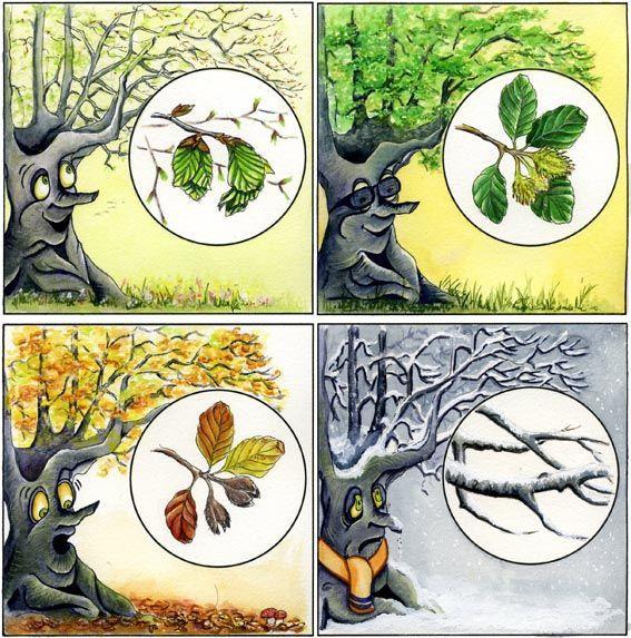 Table des 4 saisons