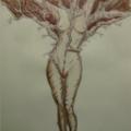 2010 - femmearbre