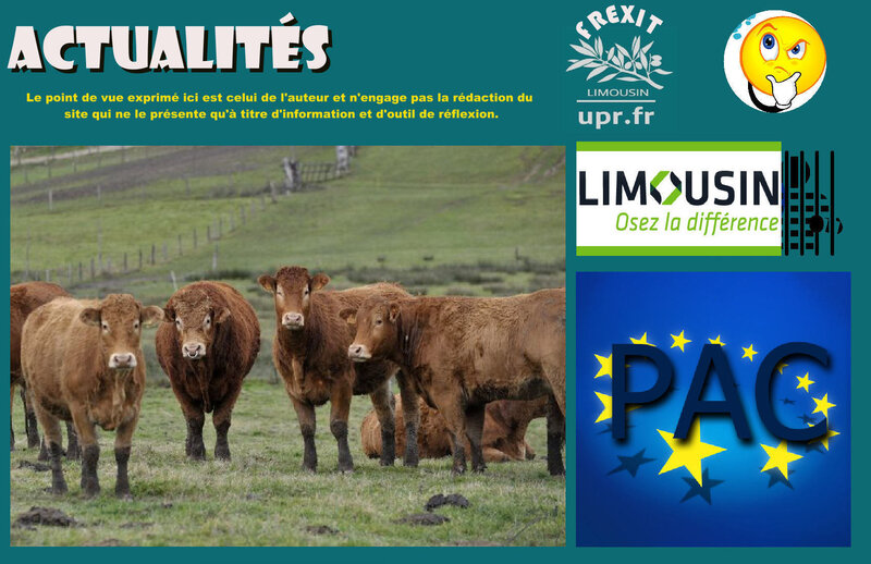 ACT PAC LIMOUSIN