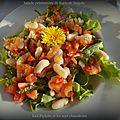 Salade fraîcheur de haricots lingots