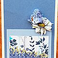 Carte papillon 3d