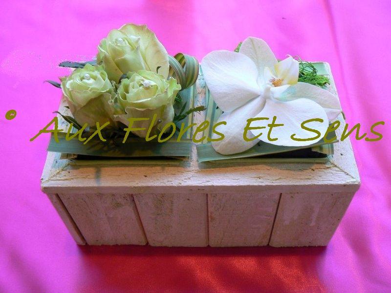 Phalaënopsis blanc et Rose verte