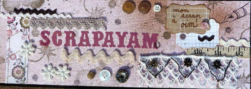 Scrapayam