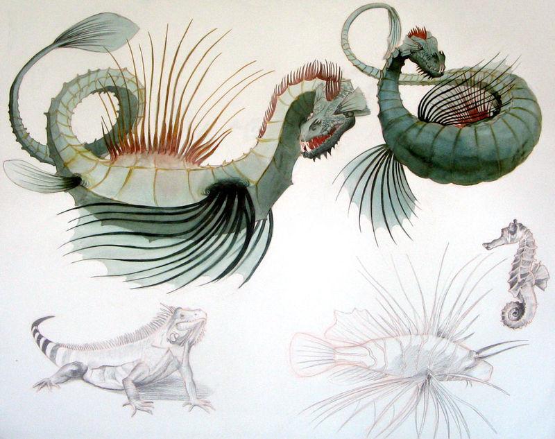 dragon-retouche
