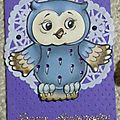 7 - Collection Cartes Chouettes