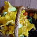 fleurs de courges, mûres etc