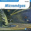 Micromégas, Voltaire