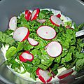 Sauce yaourt de saison aux <b>radis</b> (<b>fanes</b> compris)