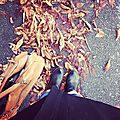 by instagr