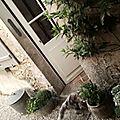 jardin3