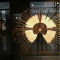 branly plumes indien 1