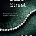 [CHRONIQUE] Dublin Street de <b>Samantha</b> <b>Young</b>