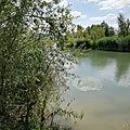 Ma <b>balade</b> au Lac de la Gravière