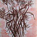 Bouquet roseaux lavis encre