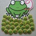 L'invasion des grenouilles !