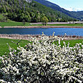 Le printemps du <b>lac</b> de Siguret (Saint-André d'Embrun)
