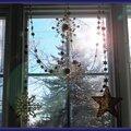 Le moment captif d'un dimanche : des étoiles dans ma fenêtre